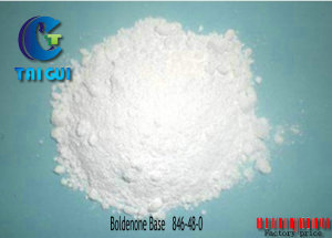 Bodybuilding Cutting Cycle Steroids Powder / Dehydrotestosterone