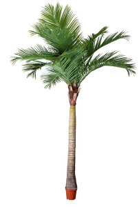 Best Selling Big Palm Tree Artificial Plants and Flowers