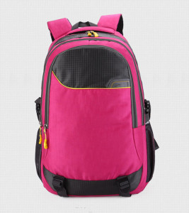 Double Shoulder Leisure School Backpack Bag