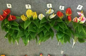 High Quality of Artificial Flowers of Anthirium